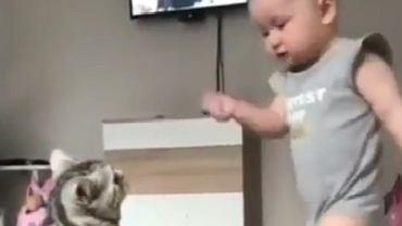 Dziecko bawi się z kotem