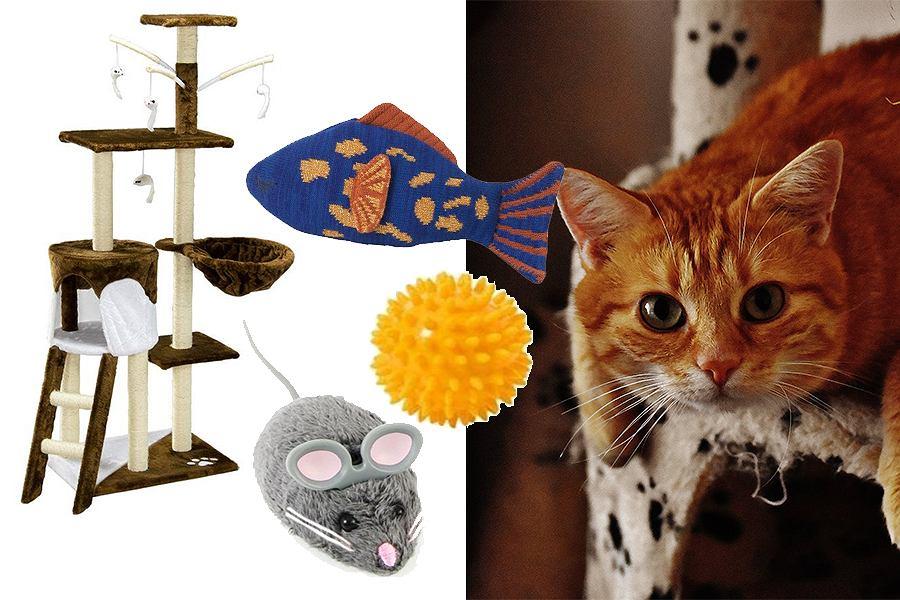Drapak dla kota i inne zabawki