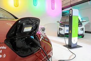 Ruszają rządowe dopłaty do aut na prąd. Kto zyska najwięcej?