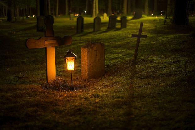 Świeczki? Kwiaty? Niemożliwe, bo to las, i na przedmioty, które do niego nie należą, nie ma tu miejsca (fot. Pexels)