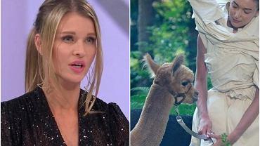 """Właścicielka alpak z """"Top Model"""" ujawnia, co działo się na planie. Oberwało się produkcji: Zwierzęta miały dosyć"""