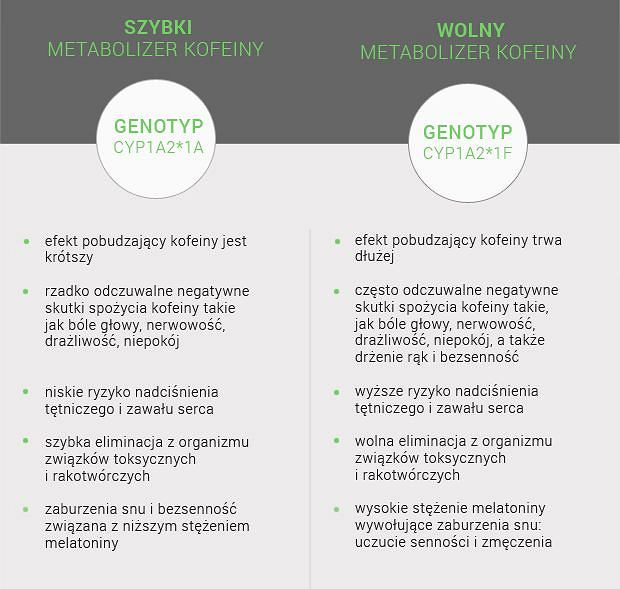 Metabolizm kofeiny: charakterystyka typów metabolicznych zależnie od genotypu CYP1A2