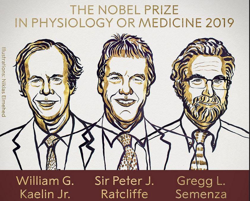 Laureaci Nagrody Nobla z medycyny i fizjologii 2019
