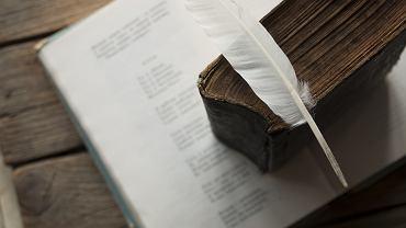 Znajomość poprawnej analizy i interpretacji wiersza przyda się na każdym poziomie edukacyjnym dziecka. Zdjęcie ilustracyjne
