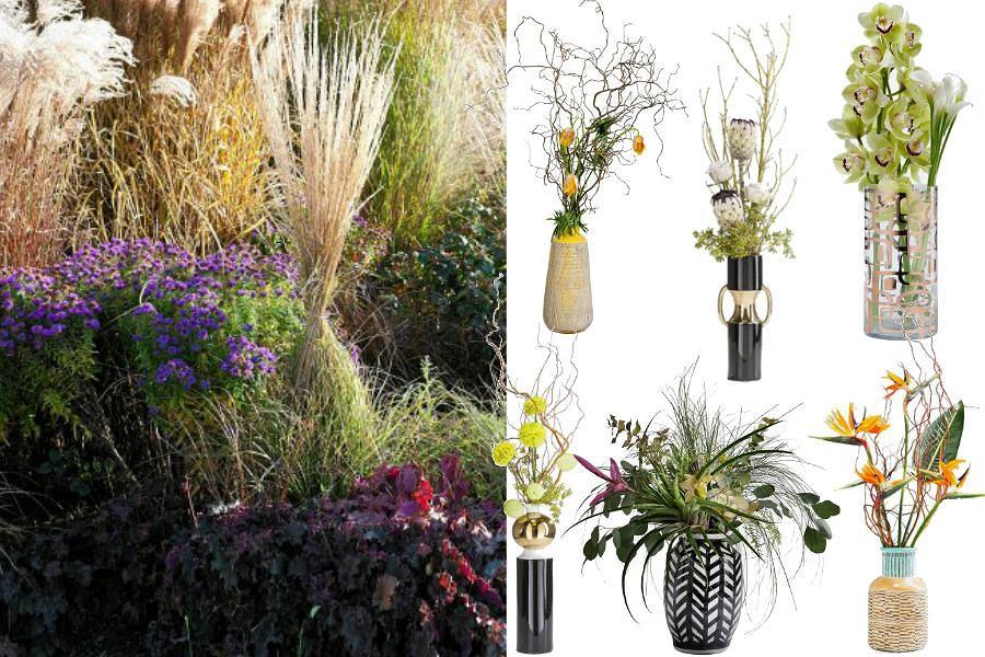 Trawy ozdobne. Jakie trawy sadzimy jesienią?