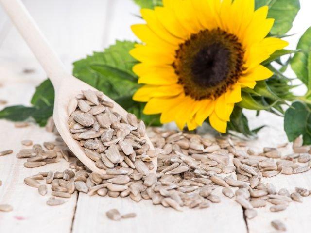 Słonecznik, choć z nazwy zwyczajny, pełen jest wartościowych składników odżywczych, w tym zwłaszcza: wielonienasyconych kwasów tłuszczowych omega-6, witamin (szczególnie E oraz B6 i B9), a także minerałów, takich jak miedź, magnez, potas czy fosfor.