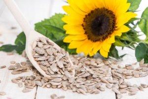 Ziarna słonecznika - wartości odżywcze, działania, jak jeść
