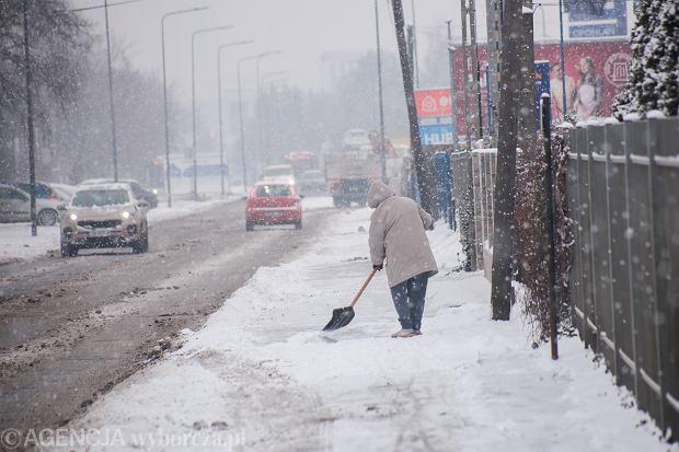 Atak zimy w Bydgoszczy, zdjęcie z 19 stycznia 2021 r.