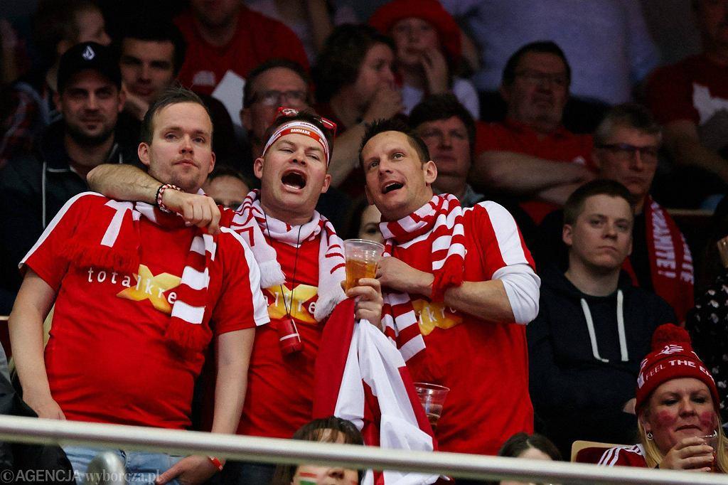 Mistrzostwa Europy w piłce ręcznej. Dania - Rosja 31:25