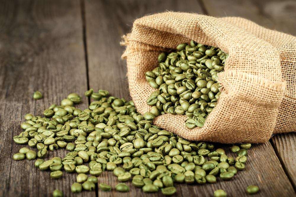 Według wielu ekspertów zielona kawa jest sprzymierzeńcem w walce ze zbędnymi kilogramami, a w porównaniu z klasyczną kawą wykazuje znacznie więcej właściwości prozdrowotnych