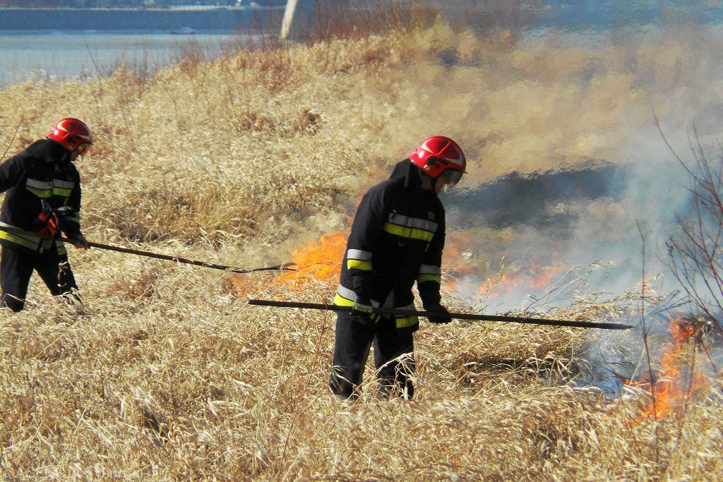 Pożar pod Warszawą (zdjęcie ilustracyjne)