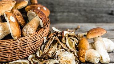 Jak suszyć grzyby? Można przeprowadzić ten proces za pomocą specjalnej suszarki lub piekarnika.