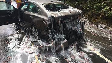 3 tony śluzic wylało się na drogę, kiedy dachowała transportująca je ciężarówka - zdjęcia z miejsca wypadku