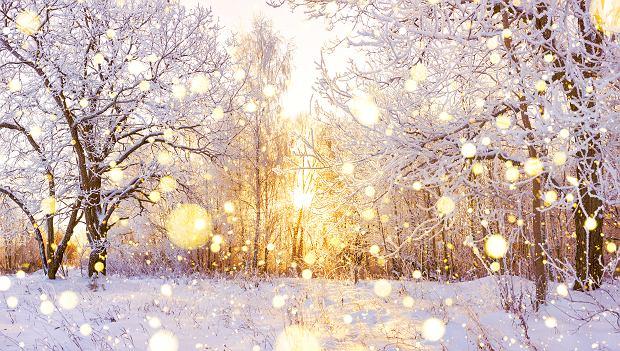 Jaka będzie zima 2020? Prognoza pogody na zimę 2020/2021 jest optymistyczna