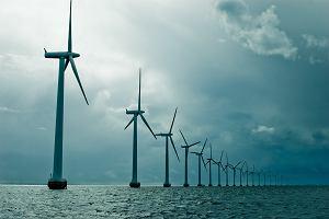 Nadspodziewanie szczery plan ministerstwa dla energii i klimatu. Zamieszanie z wiatrakami
