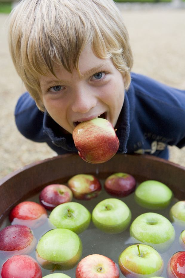Apple bobbing / shutterstock
