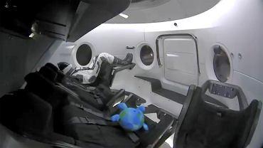 SpaceX Crew Capsule