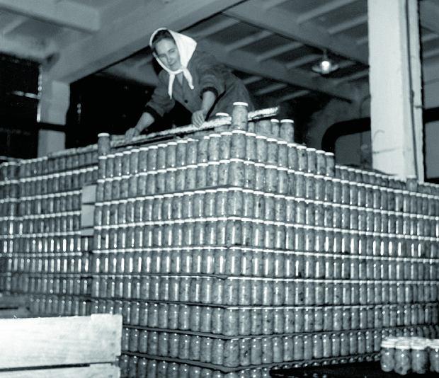 Stosy słoików w zakładzie przetwórstwa owocowo-warzywnego w Podgajczach, 1975 rok