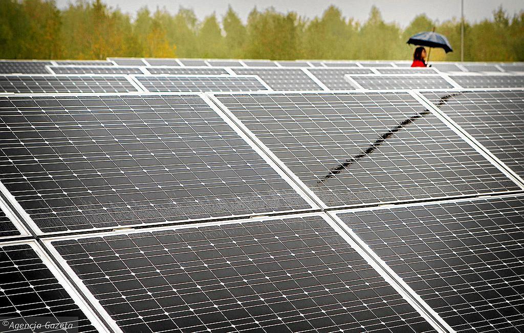 Panele słoneczne staną się mniej opłacalne? Wiceminister wyjaśnia (zdjęcie ilustracyjne)