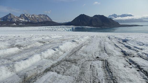 Czołowa część Lodowca Hansa, jednego z najlepiej zbadanych lodowców Arktyki. Co roku zmniejsza on swój zasięg o ok. 100 m.