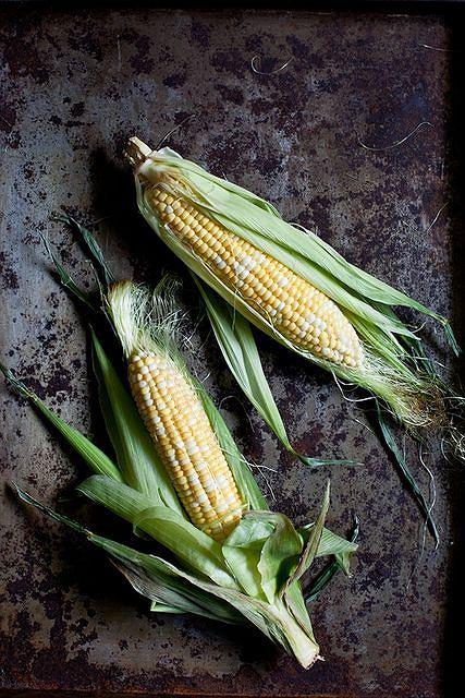 'Zimowa' kukurydza jest importowana z miejsc, gdzie z dużym prawdopodobieństwem jest modyfikowana genetycznie