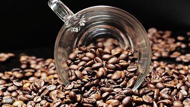 kawa - właściwości