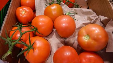 Pomidory ze sklepu