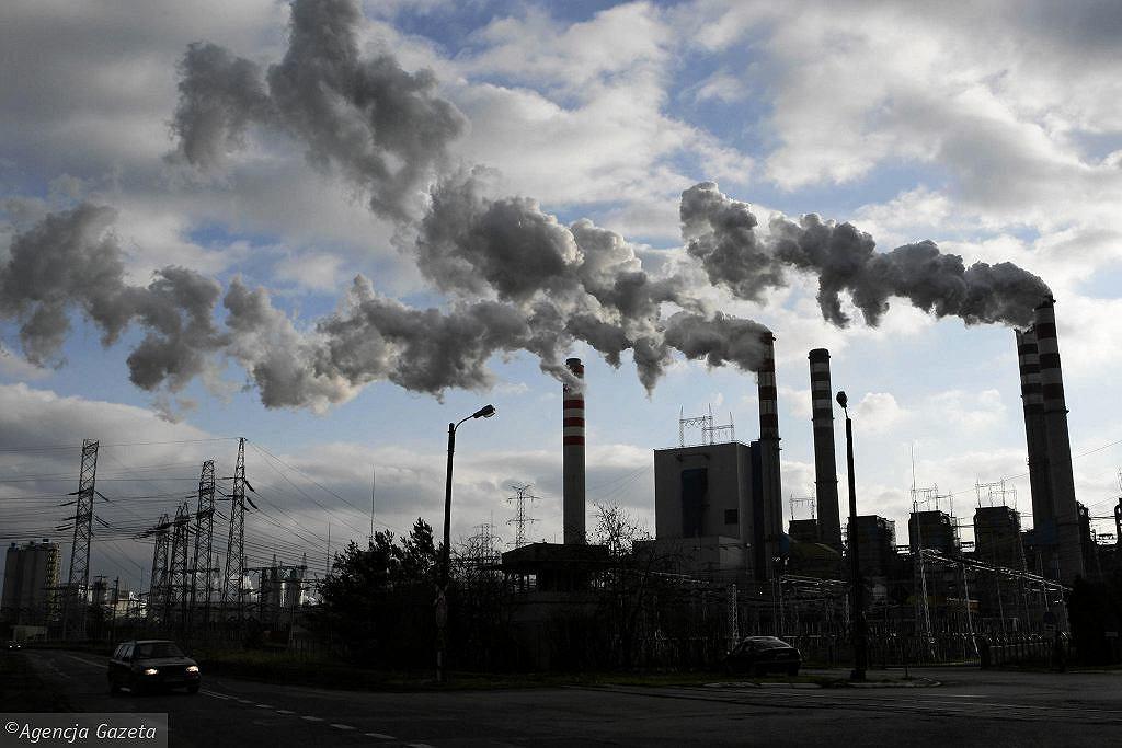 Andrzej Duda o neutralności klimatycznej Polski do 2050: staram się nie obiecywać gruszek na wierzbie (zdjęcie ilustracyjne)
