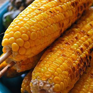 Złote kolby kukurydzy prosto z rusztu podane ze szczypiorkowym masłem