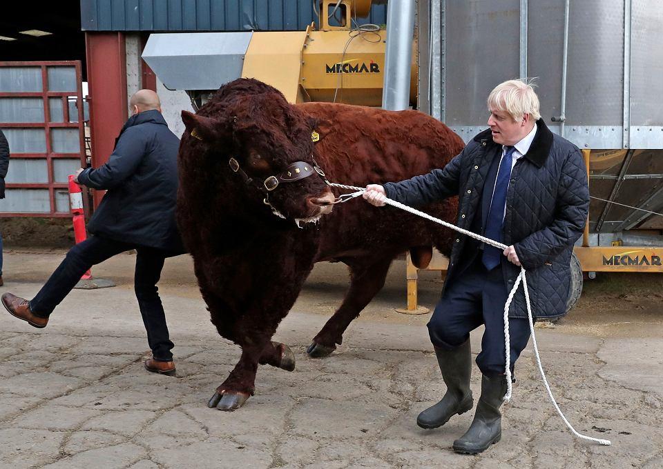 6.09.2019, premier Wielkiej Brytanii Boris Johnson podczas wizyty na farmie Darnford w miejscowości Banchory w pobliżu Aberdeen w Szkocji.
