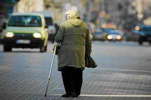 Nędza emerytalna tysięcy samozatrudnionych, Czesi w szoku