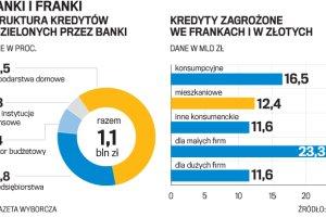 Bankowe pomysły na franka. Przewalutowanie na raty?