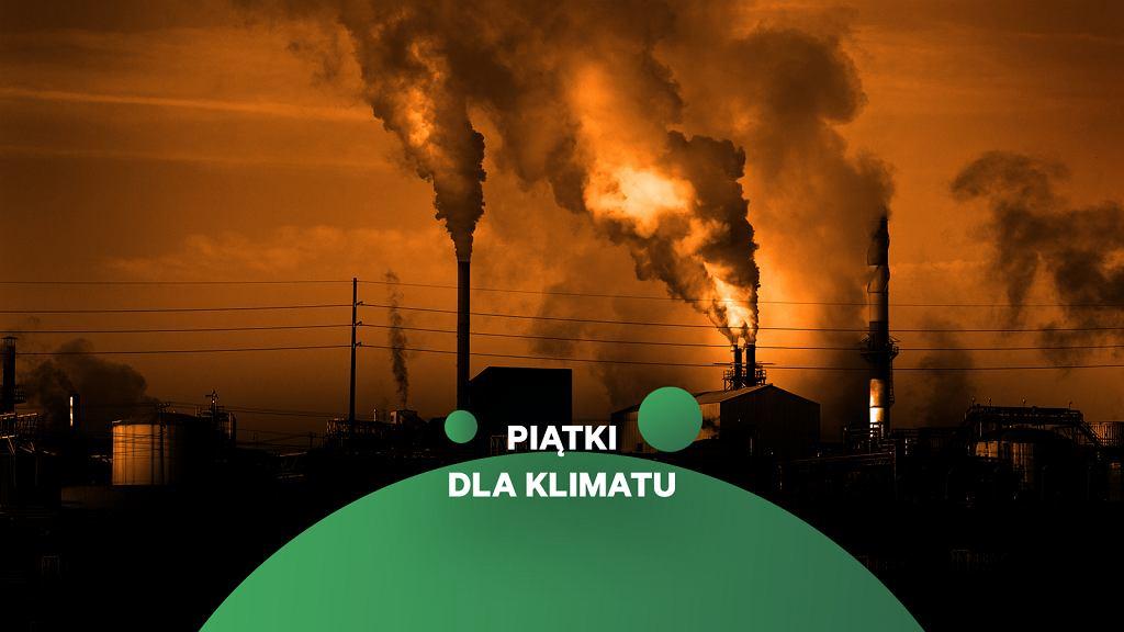 Piątek dla klimatu. (zdjęcie ilustracyjne)