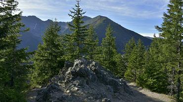 Szlaki na Gęsią Szyję są jednymi z najbardziej uczęszczanych w Tatrach.