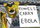 """NFL. """"Ręczniki noszą wirusa ebola"""". Jacksonville Jaguars przepraszają za żart maskotki"""