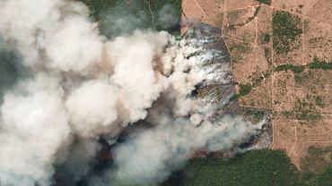 Zdjęcie z 20 sierpnia znad stanu Para w Amazonii
