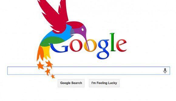 Hummingbird czyli koliber - nowy algorytm wyszukiwania Google