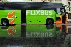 """Szef FlixBusa w Polsce: """"Gdy upadają PKS-y, budżet państwa traci dziesiątki milionów złotych"""""""