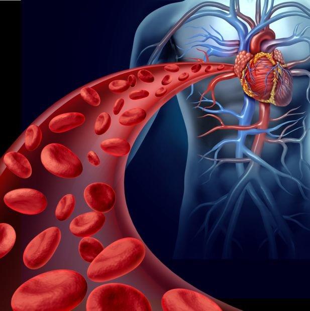 Choroby rozrostowe układu krążenia