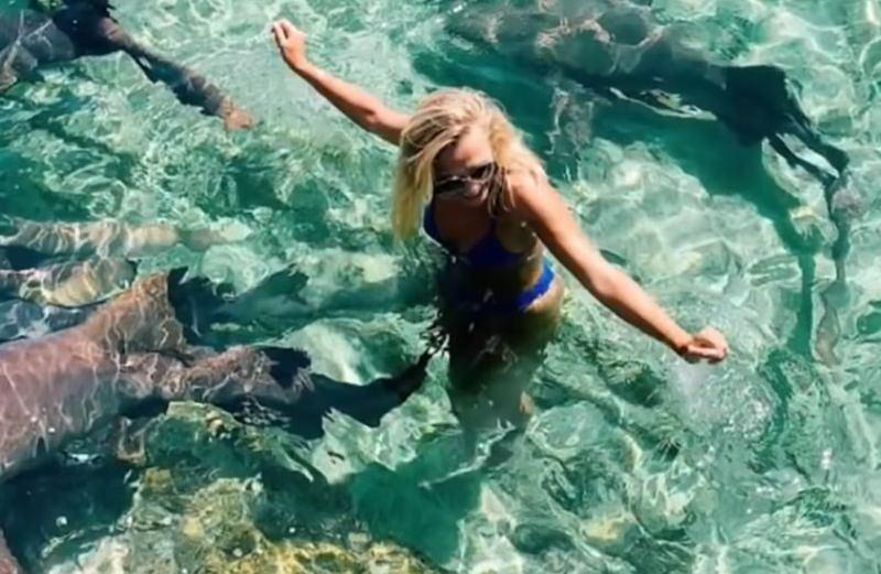 Chciała mieć zdjęcia z rekinami, wskoczyła więc do wody