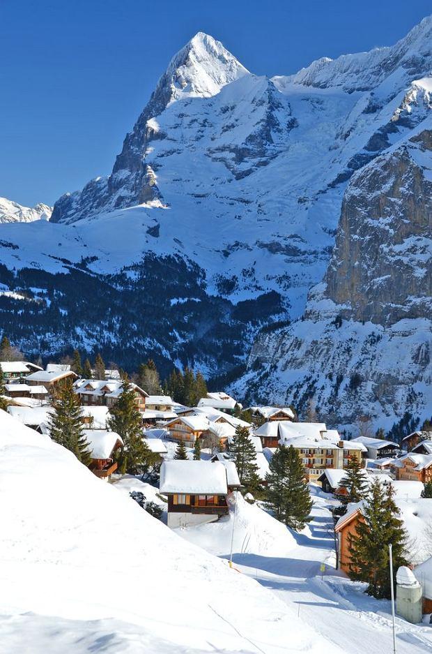 Szwajcaria Jungfrau. Eiger / shutterstock