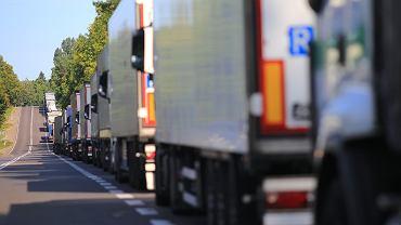 Wielka Brytania. Rząd planuje testować kierowców ciężarówek na obecność koronawirusa