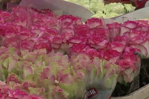 Jakie kwiaty wybrać do ślubu?