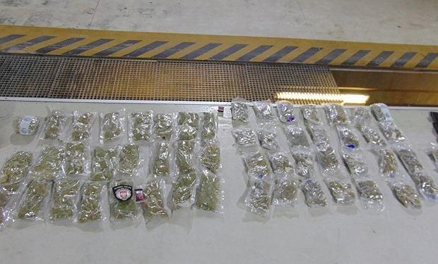 54 woreczki z suszem marihuany w skrzyni biegów |