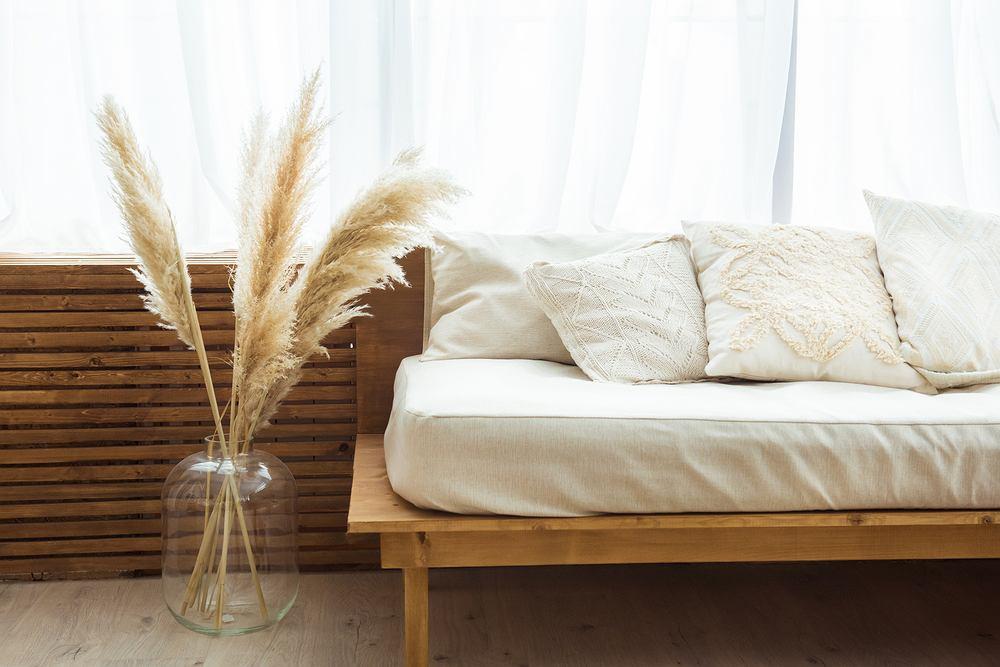 Trawa pampasowa- puszysta ozdoba idealna do domu lub ogrodu. Zdjęcie ilustracyjne
