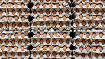 Złe wieści dla fanów jajek: jesienią ich cena może podskoczyć. Sprawdzamy, dlaczego
