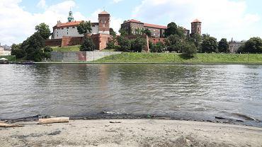 Widok na Wawel z Bulwaru Poleskiego w Krakowie