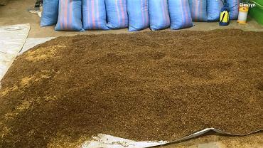 Policjanci z cieszyńskiego wydziału do walki z przestępczością gospodarczą zabezpieczyli prawie 6 ton nielegalnego tytoniu oraz maszyny służące do produkcji i suszenia
