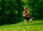 Szybki Mózg - cykl biegów na orientację w warszawskich parkach