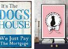Dekoracje z motywami psa i kota
